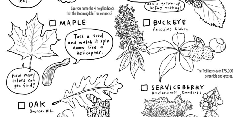scavenger hunt with drawings of plants